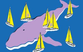«Криптовалютные киты» имеют примерно 40% от всех биткоинов! – Аарон Браун