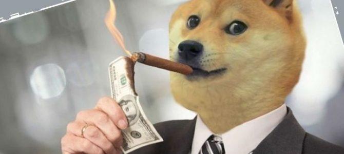 Краткий обзор Dogecoin и Dogethereum